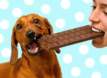 Benefícios Escova de Chocolate